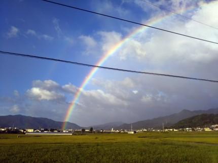 キレイな虹